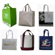 Shopping Bag/Eco Bag (1)